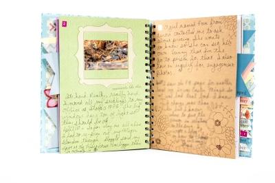Scrapbookista-Goals-Journal-March-2014-003